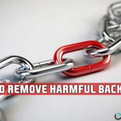 remove harmful backlinks using seo profiler